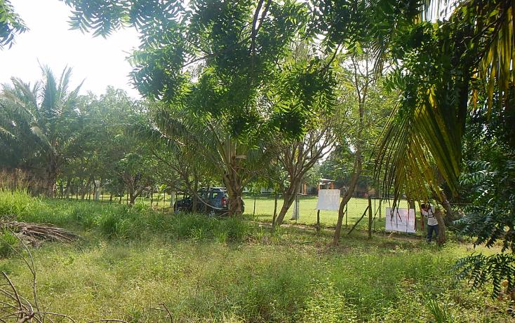 Foto de terreno habitacional en venta en  , el jobo (escribano), tampico alto, veracruz de ignacio de la llave, 1667566 No. 03