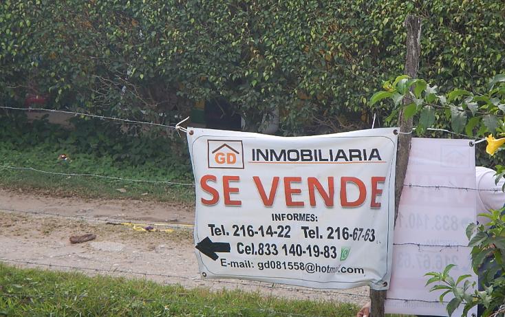 Foto de terreno habitacional en venta en  , el jobo (escribano), tampico alto, veracruz de ignacio de la llave, 1667566 No. 05