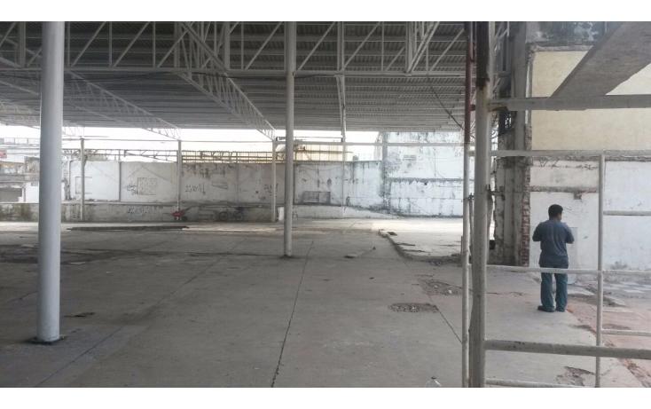 Foto de terreno comercial en renta en  , el jobo, veracruz, veracruz de ignacio de la llave, 1410431 No. 03