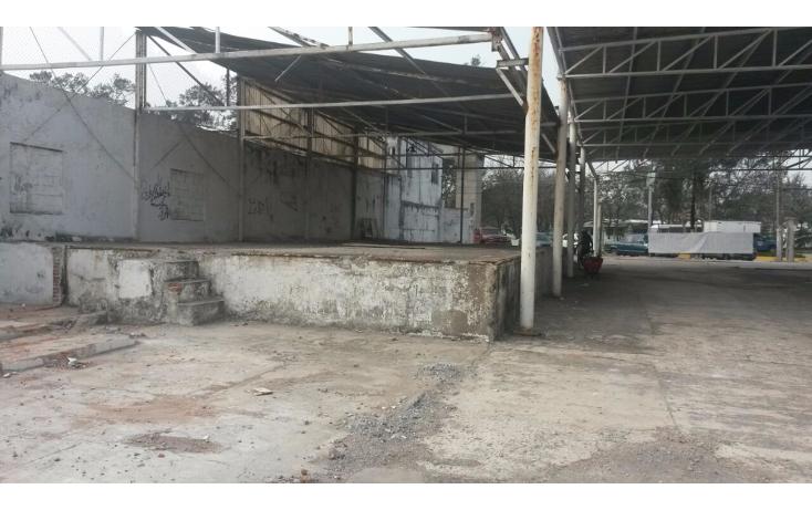 Foto de terreno comercial en renta en  , el jobo, veracruz, veracruz de ignacio de la llave, 1410431 No. 04