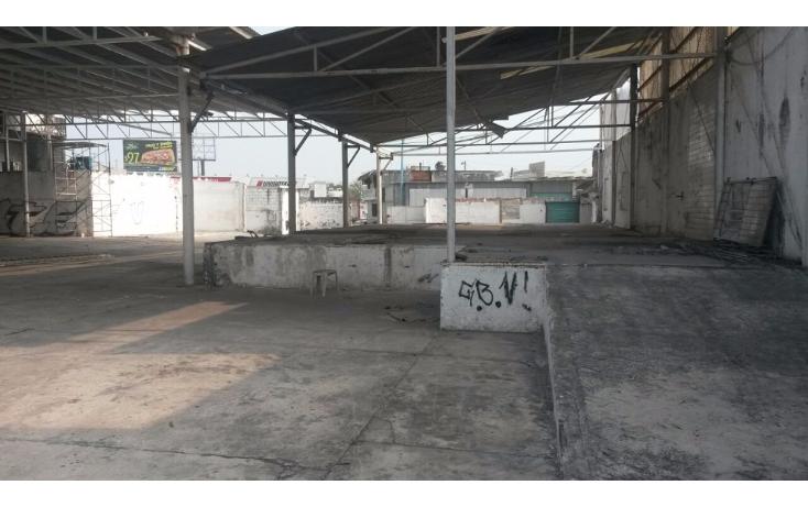 Foto de terreno comercial en renta en  , el jobo, veracruz, veracruz de ignacio de la llave, 1410431 No. 06