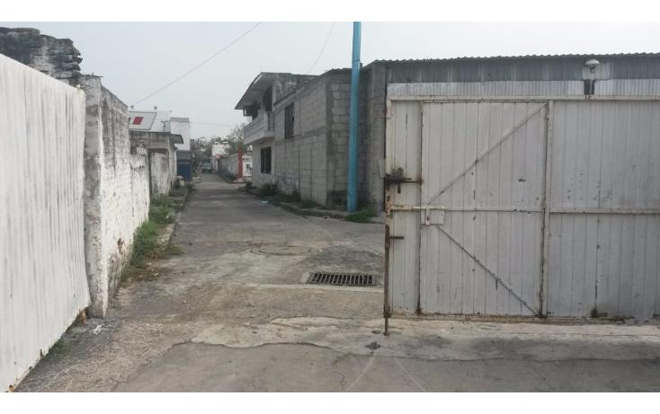 Foto de terreno comercial en renta en  , el jobo, veracruz, veracruz de ignacio de la llave, 1410431 No. 08