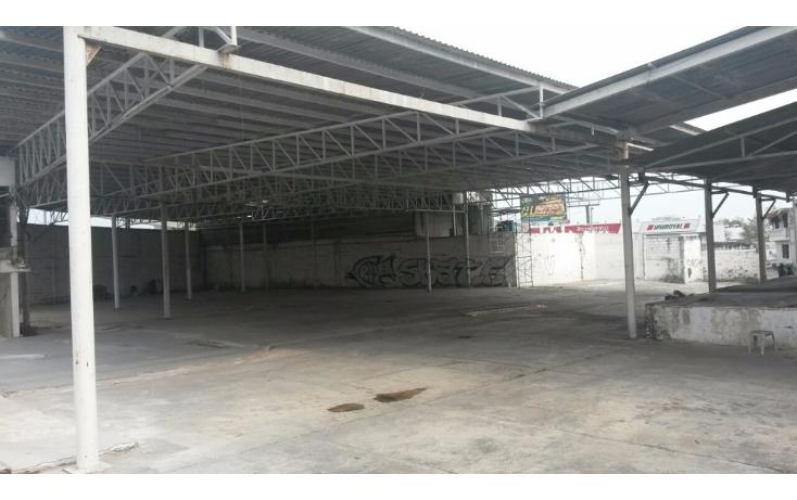 Foto de terreno comercial en renta en  , el jobo, veracruz, veracruz de ignacio de la llave, 1410431 No. 10