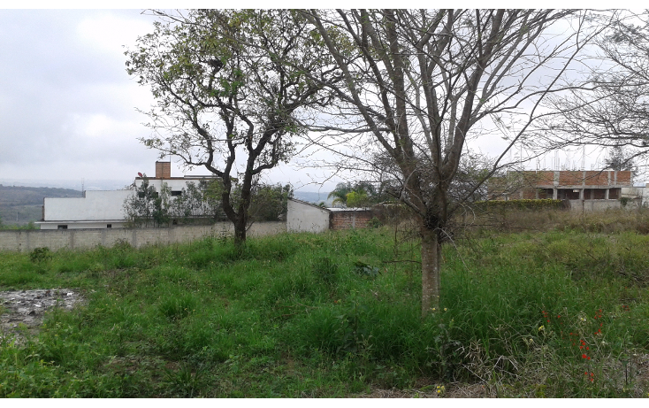 Foto de terreno habitacional en venta en  , el lencero, emiliano zapata, veracruz de ignacio de la llave, 1820880 No. 03