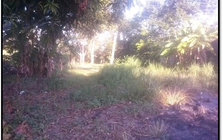 Foto de terreno habitacional en venta en  , el limón, paraíso, tabasco, 1316099 No. 01