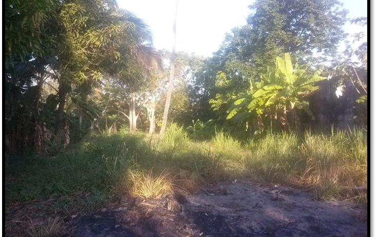 Foto de terreno habitacional en venta en  , el limón, paraíso, tabasco, 1316099 No. 02
