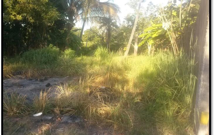 Foto de terreno habitacional en venta en  , el limón, paraíso, tabasco, 1316099 No. 03