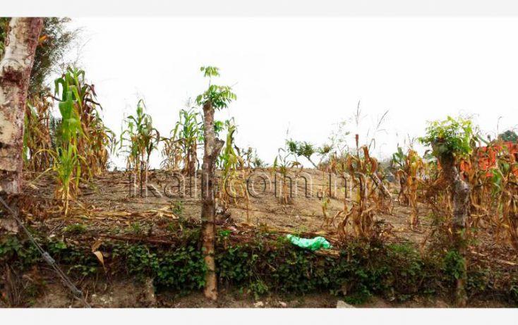 Foto de terreno habitacional en venta en el manguito, infonavit las granjas, tuxpan, veracruz, 1826242 no 04