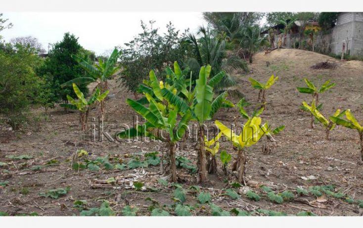 Foto de terreno habitacional en venta en el manguito, infonavit las granjas, tuxpan, veracruz, 1826242 no 06