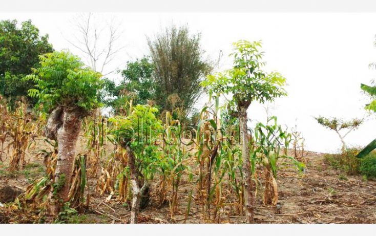 Foto de terreno habitacional en venta en el manguito, infonavit las granjas, tuxpan, veracruz, 1826242 no 09
