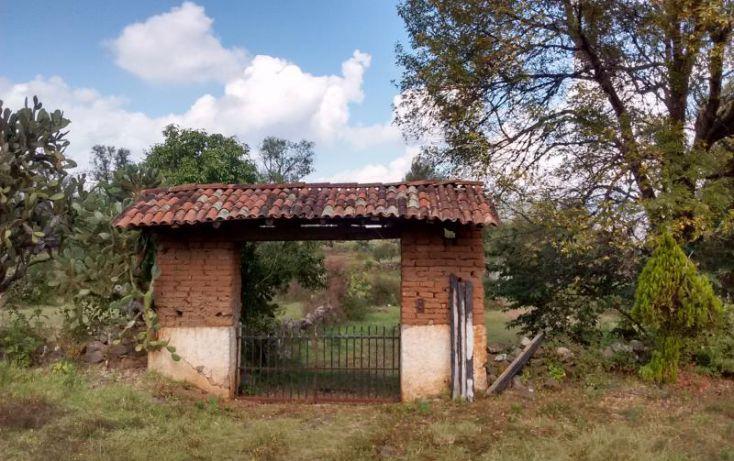 Foto de rancho en venta en el manzanillal, el manzanillal colonia enrique ramírez, pátzcuaro, michoacán de ocampo, 1765848 no 07