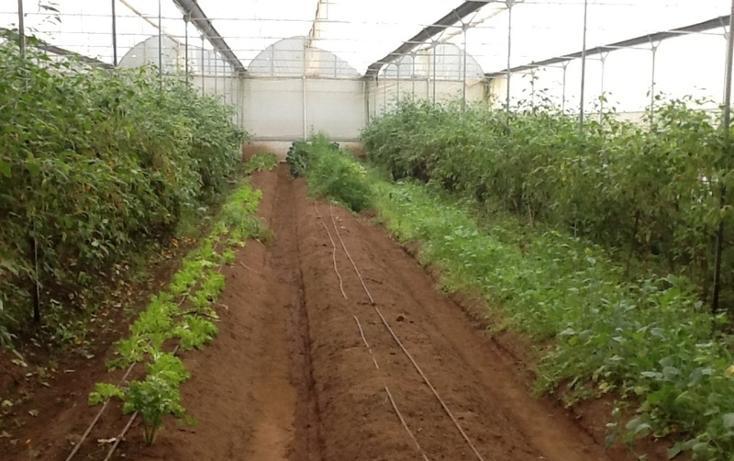 Foto de terreno habitacional en venta en  , el manzano, valle de bravo, méxico, 829595 No. 02