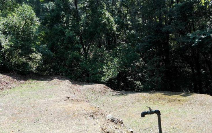 Foto de terreno habitacional en venta en, el mezcal, tzitzio, michoacán de ocampo, 1998062 no 01
