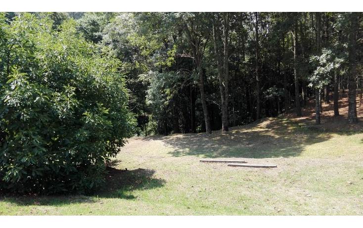 Foto de terreno habitacional en venta en  , el mezcal, tzitzio, michoacán de ocampo, 1998062 No. 02