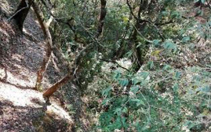 Foto de terreno habitacional en venta en, el mezcal, tzitzio, michoacán de ocampo, 1998062 no 04