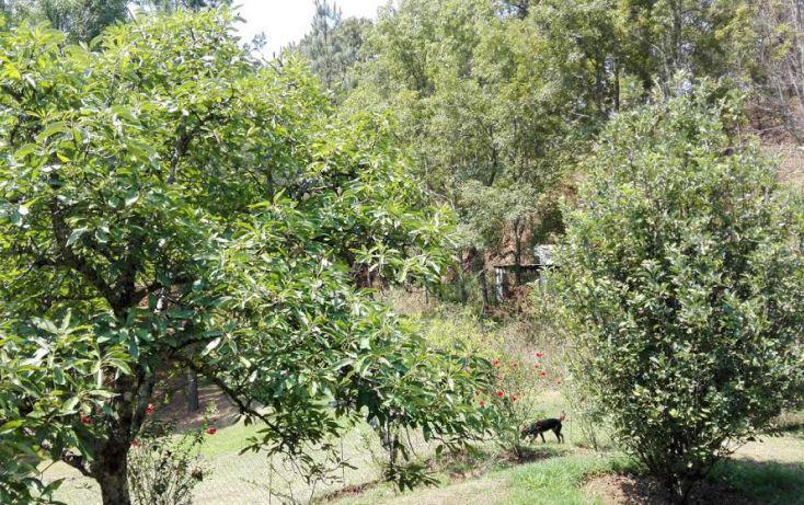 Foto de terreno habitacional en venta en, el mezcal, tzitzio, michoacán de ocampo, 1998062 no 07
