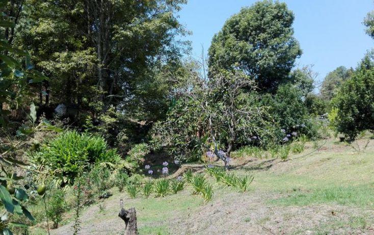 Foto de terreno habitacional en venta en, el mezcal, tzitzio, michoacán de ocampo, 1998062 no 08