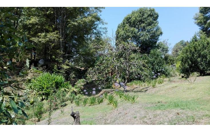 Foto de terreno habitacional en venta en  , el mezcal, tzitzio, michoacán de ocampo, 1998062 No. 08
