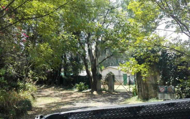 Foto de terreno habitacional en venta en, el mezcal, tzitzio, michoacán de ocampo, 1998062 no 10