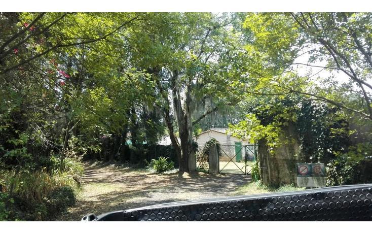 Foto de terreno habitacional en venta en  , el mezcal, tzitzio, michoacán de ocampo, 1998062 No. 10