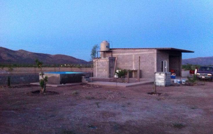 Foto de terreno comercial en venta en, el mimbre, saucillo, chihuahua, 1832941 no 05