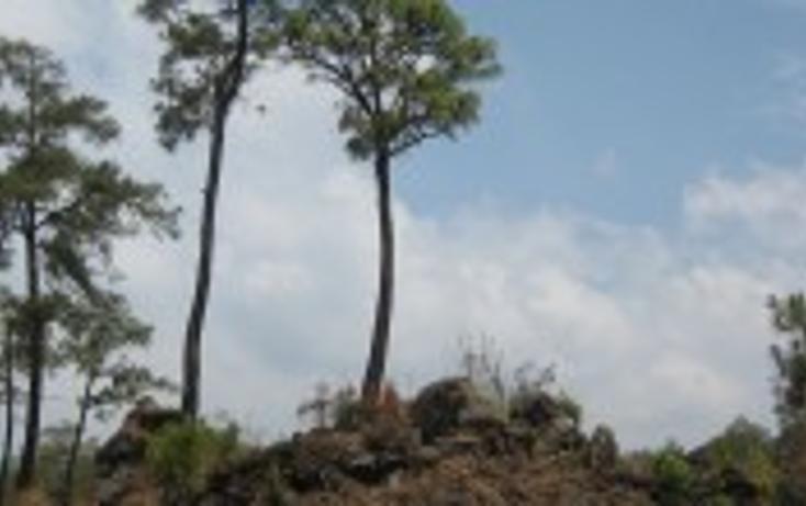 Foto de terreno habitacional en venta en, el mirador, uruapan, michoacán de ocampo, 1190909 no 01