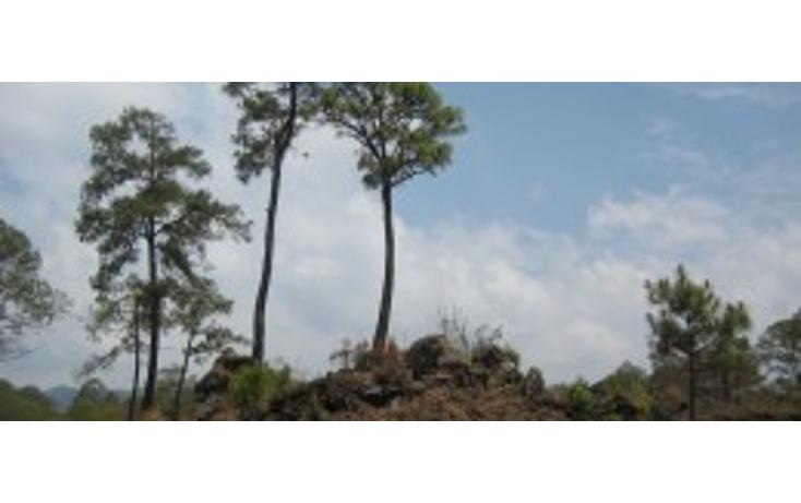 Foto de terreno habitacional en venta en  , el mirador, uruapan, michoacán de ocampo, 1190909 No. 01