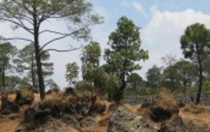 Foto de terreno habitacional en venta en, el mirador, uruapan, michoacán de ocampo, 1245009 no 01