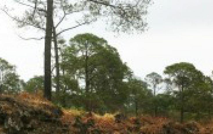 Foto de terreno habitacional en venta en, el mirador, uruapan, michoacán de ocampo, 1246193 no 01
