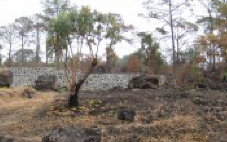 Foto de terreno habitacional en venta en, el mirador, uruapan, michoacán de ocampo, 1250385 no 01