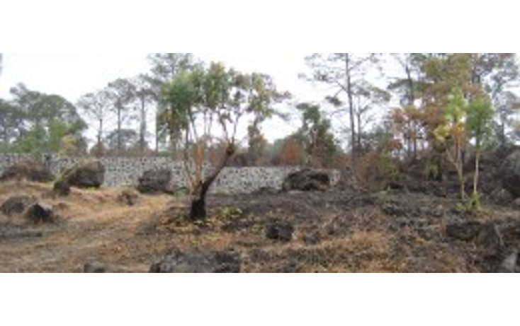 Foto de terreno habitacional en venta en  , el mirador, uruapan, michoacán de ocampo, 1250385 No. 01