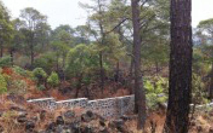 Foto de terreno habitacional en venta en, el mirador, uruapan, michoacán de ocampo, 1260055 no 01