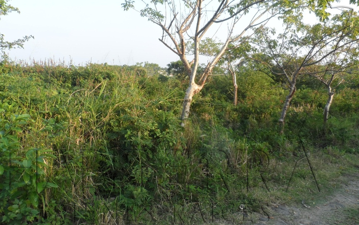 Foto de terreno habitacional en venta en  , el naranjal, tuxpan, veracruz de ignacio de la llave, 1120131 No. 03