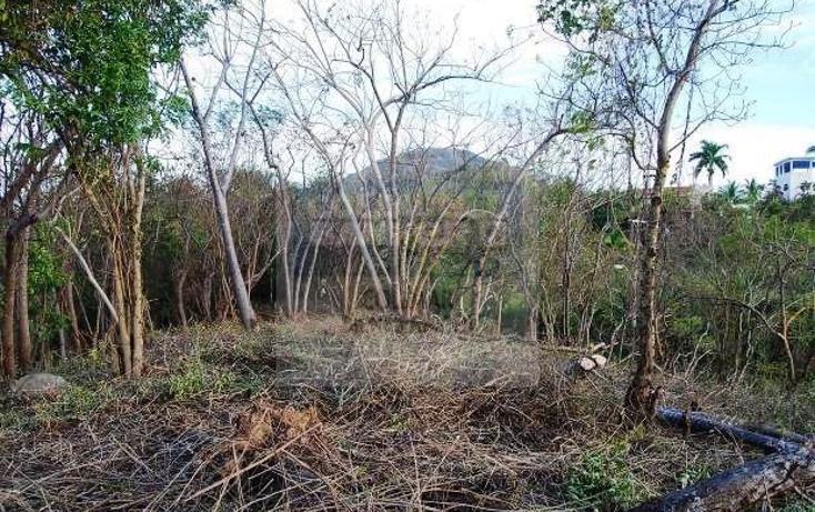 Foto de terreno habitacional en venta en  , el naranjo, manzanillo, colima, 1653025 No. 05
