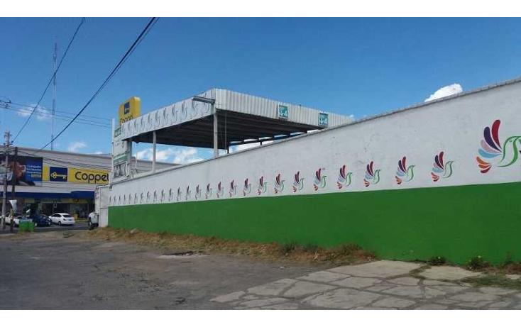 Foto de terreno comercial en venta en  , el nogal, metepec, m?xico, 1370523 No. 05