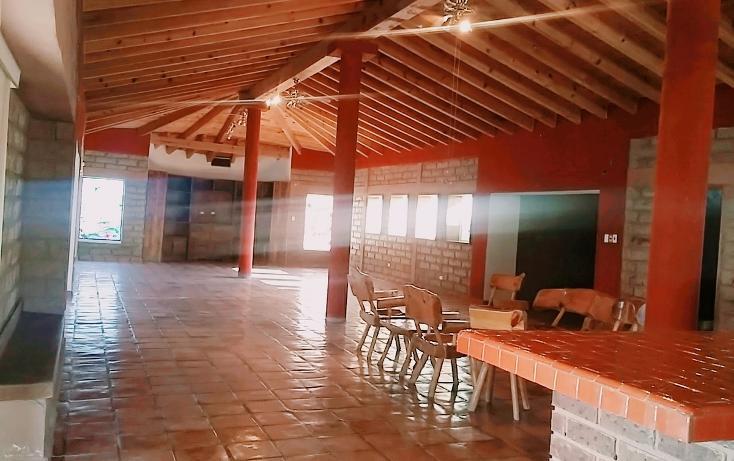 Foto de casa en venta en  , el olivo, matamoros, coahuila de zaragoza, 1028273 No. 08