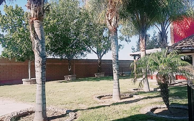 Foto de casa en venta en  , el olivo, matamoros, coahuila de zaragoza, 1028273 No. 12
