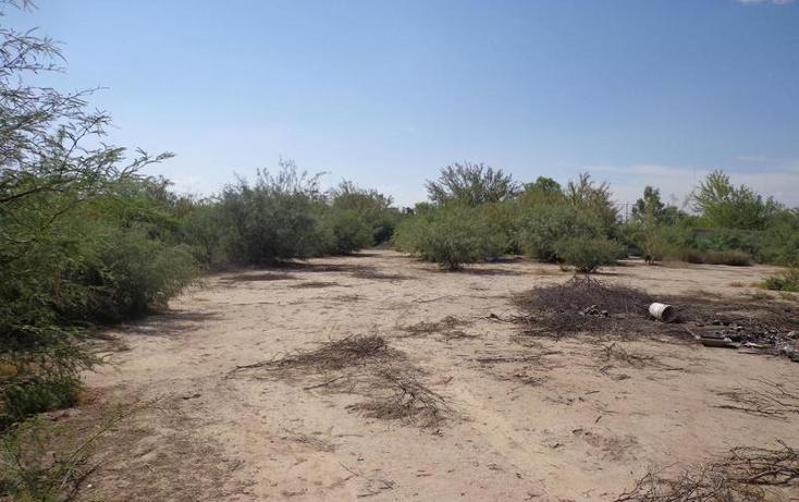 Foto de terreno habitacional en venta en  , el olivo, matamoros, coahuila de zaragoza, 1028275 No. 05