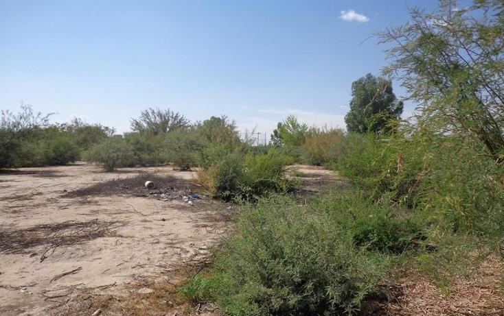 Foto de terreno habitacional en venta en  , el olivo, matamoros, coahuila de zaragoza, 1028275 No. 06
