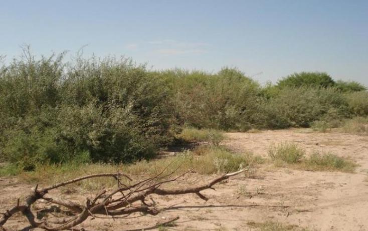 Foto de terreno habitacional en venta en  , el olivo, matamoros, coahuila de zaragoza, 698277 No. 03