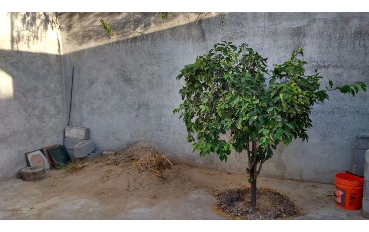 Foto de casa en venta en  , el olmo, reynosa, tamaulipas, 1044743 No. 08