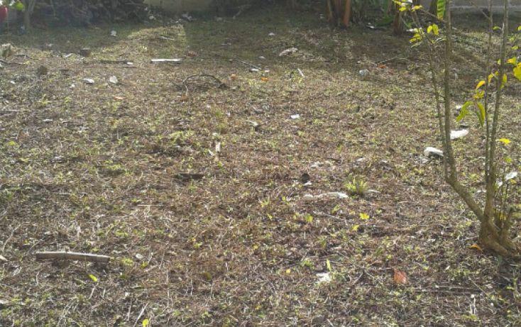 Foto de terreno habitacional en venta en, el olmo, xalapa, veracruz, 1862338 no 06