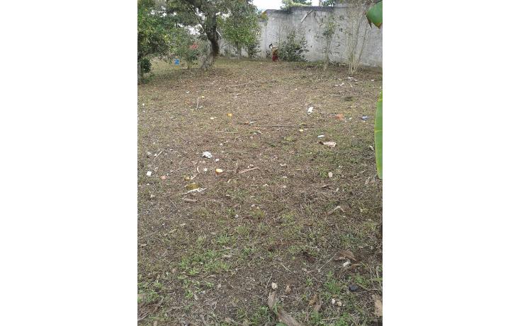 Foto de terreno habitacional en venta en  , el olmo, xalapa, veracruz de ignacio de la llave, 1852166 No. 02
