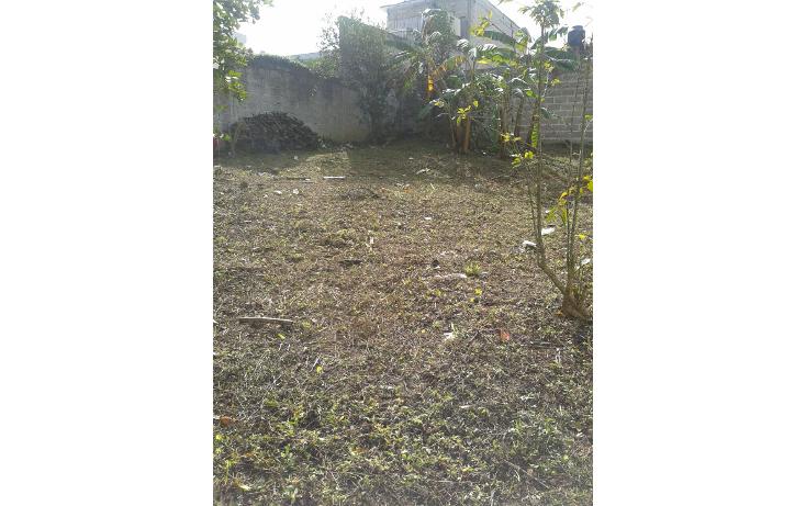 Foto de terreno habitacional en venta en  , el olmo, xalapa, veracruz de ignacio de la llave, 1852166 No. 03