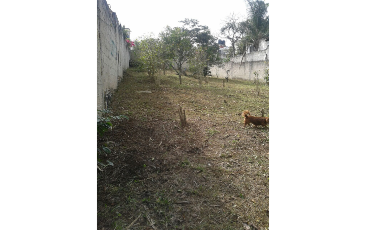 Foto de terreno habitacional en venta en  , el olmo, xalapa, veracruz de ignacio de la llave, 1862338 No. 02