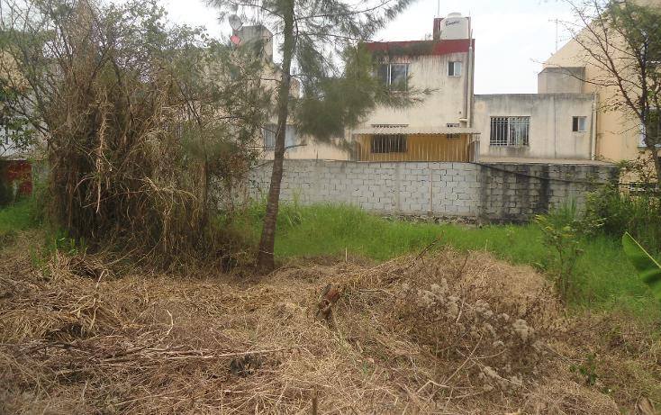 Foto de terreno habitacional en venta en  , el olmo, xalapa, veracruz de ignacio de la llave, 1932972 No. 01