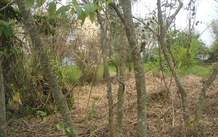 Foto de terreno habitacional en venta en  , el olmo, xalapa, veracruz de ignacio de la llave, 1932972 No. 03