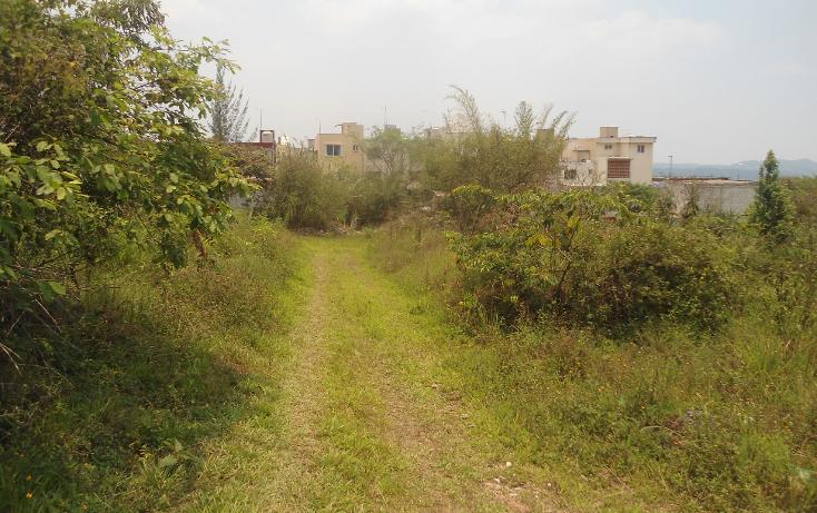 Foto de terreno habitacional en venta en  , el olmo, xalapa, veracruz de ignacio de la llave, 1932972 No. 04