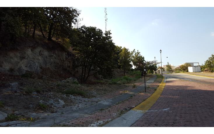 Foto de terreno habitacional en venta en  , el palomar, tlajomulco de z??iga, jalisco, 1948999 No. 07