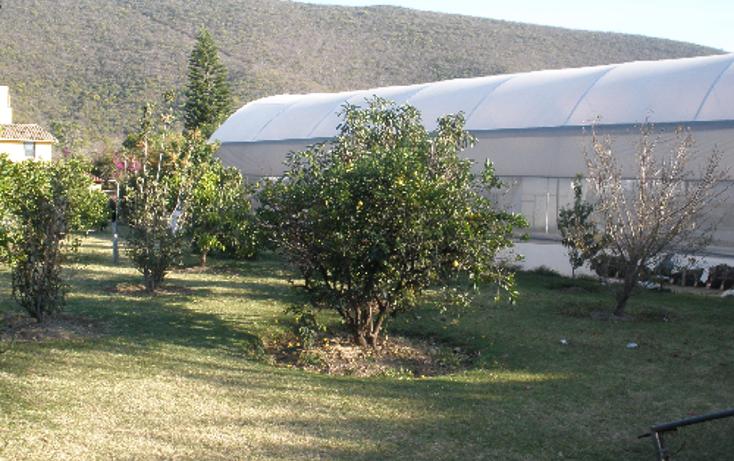 Foto de casa en venta en  , el paraíso, huaquechula, puebla, 1271345 No. 06